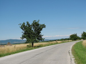 country-road-1404525-640x480 (2)